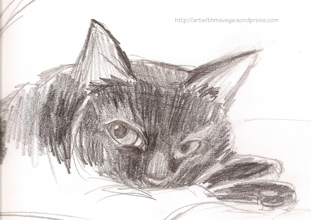 One of the family cats, Angus (Pencil on paper, 2003)