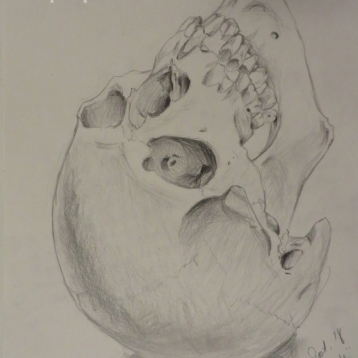 "Study for the painting ""Omnia Vanitas"" (Pencil on paper, 2014)"
