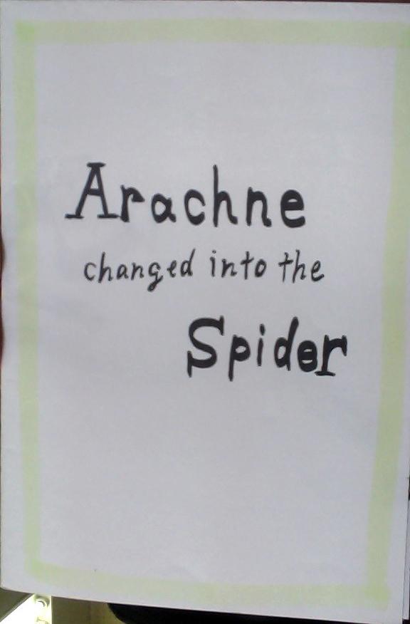 Arachne 1